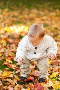 autumn-163913_640
